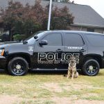 New Tyrone Police Department K-9 Bruno will soon receive a donation of protective year. Photo/Tyrone Police Department.