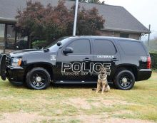 Tyrone's cop dog gets body armor