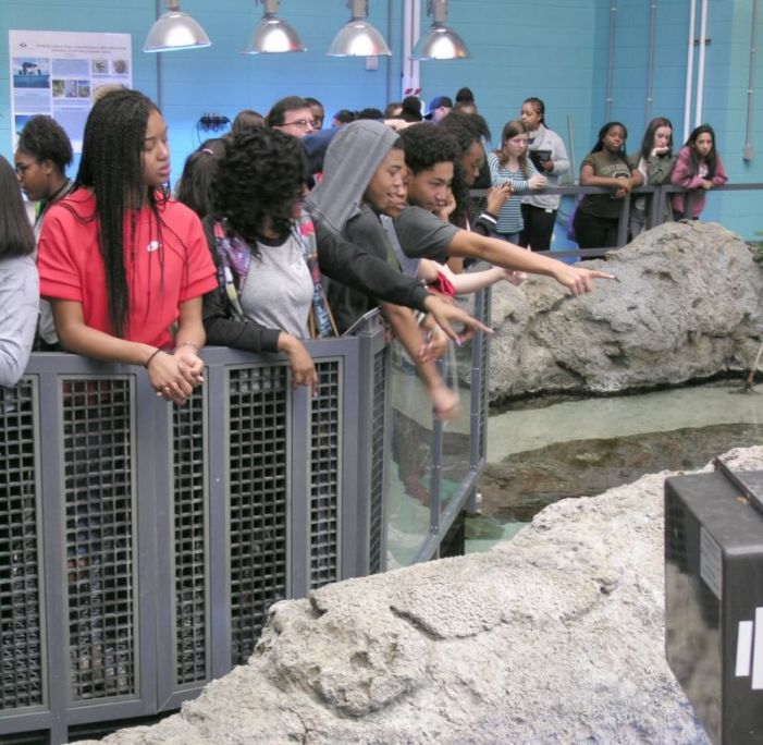 Sandy Creek High School STEM students visit aquarium